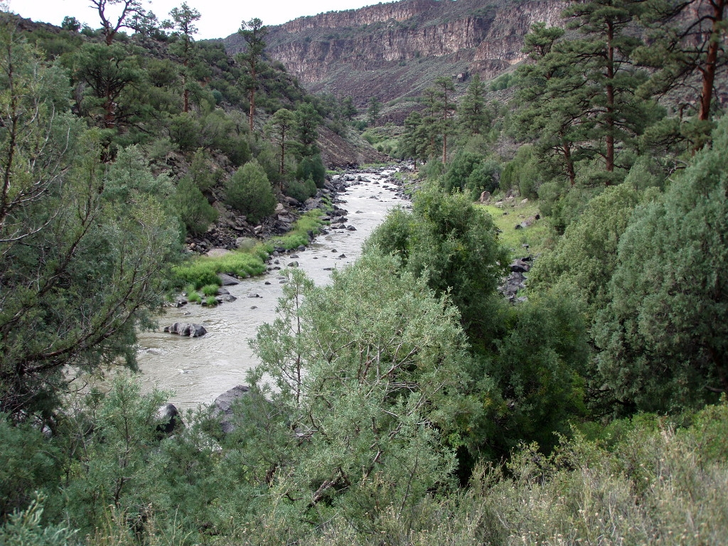 Rio Grande New Mexico Fly Fishing