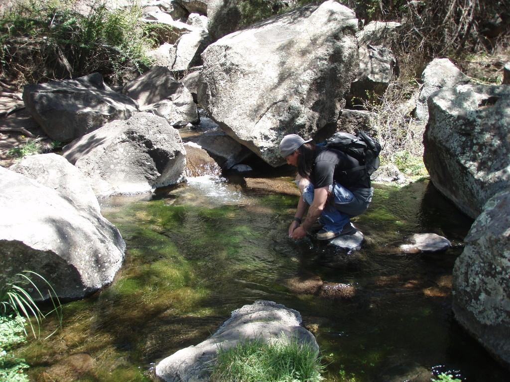 Rio Grande New Mexico Fly Fishing