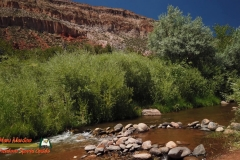 Jemez-River-S-Bend-Trout-Fishing-Public-Access-Anafi-Osmo-Pocket-07-01-2020