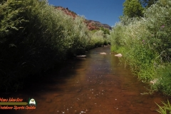 Jemez-River-Spanish-Queen-Trout-Fishing-Public-Access-Anafi-Osmo-Pocket-07-01-2020