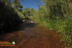 Jemez-River-The-Bluffs-Trout-Fishing-Public-Access-Anafi-Osmo-Pocket-07-01-2020