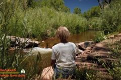 Jemez-River-Trout-Fishing-Public-Access-Osmo-Pocket-07-01-2020