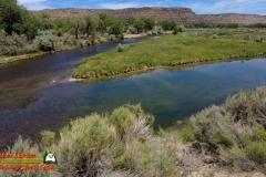 San-Juan-River-Navajo-Lake-State-Park-Pocket2-06-09-2021