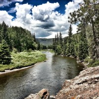 New Mexico Fly Fishing Guide
