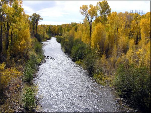 Rio Chama New Mexico Fly Fishing