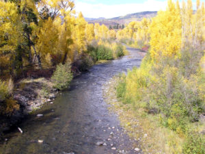 Rio Chama New Mexico Fly Fishing