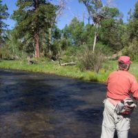 Cimarron River New Mexico Fly Fishing