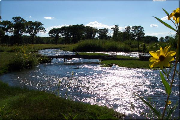 Culebra Creek Fly Fishing