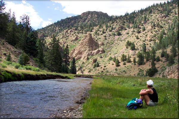 Rio Costilla New Mexico Fly Fishing
