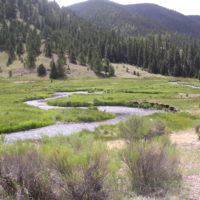 Fly Fishing Rio Costilla New Mexico