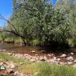 Jemez River La Junta Trout Fishing Public Access