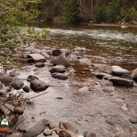 Conejos River Trout Fishing Access at Aspen Glade Campground