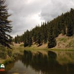Spectacle Lake - Conejos River Trout Fishing Access
